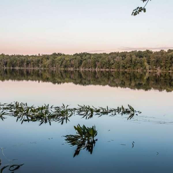 Photo of the lake at Camp Zeke at sunset