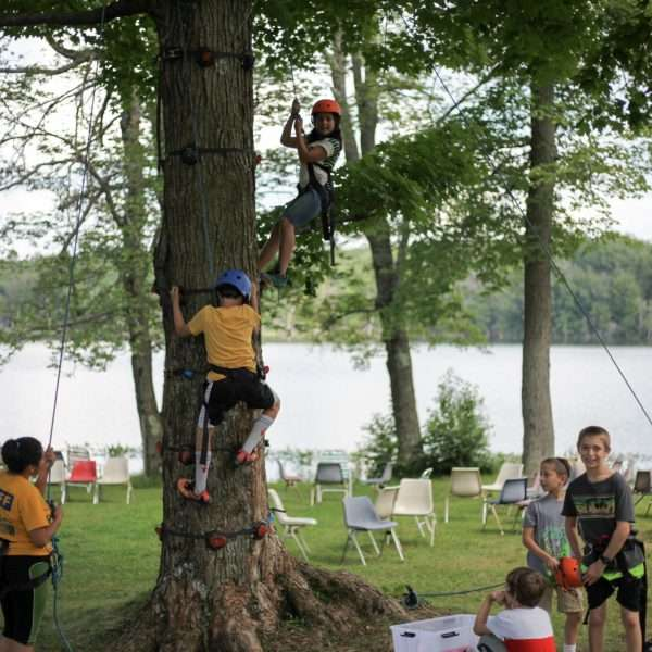 Group of campers climbing in the trees