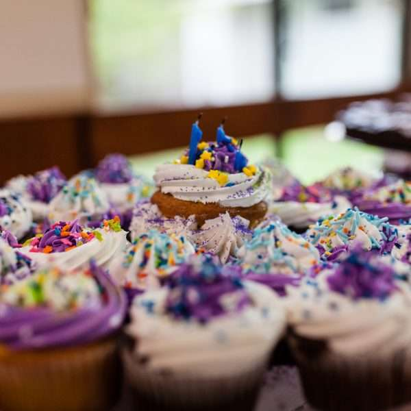 Close up shot of cupcakes decorated with purple sprinkles